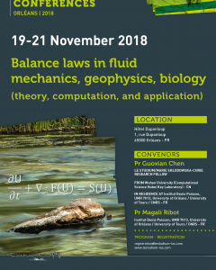 Balance laws in fluid mechanics, geophysics, biology (theory, computation, and application)